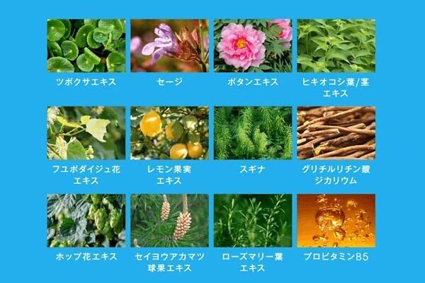 ペルソナ育毛剤には和漢を含む106種類の育毛強化成分配合