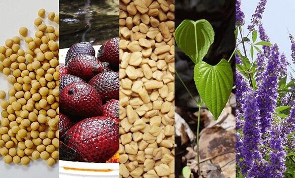 ロイヤルハニーアップは5つの天然成分を配合